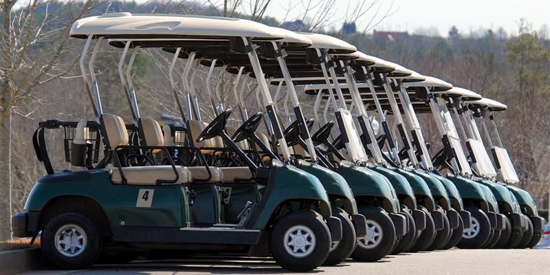 Himax-Golf-car-battery