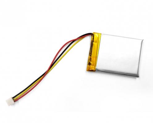polymer-battery